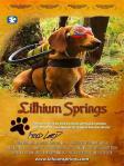 lithiumsprings